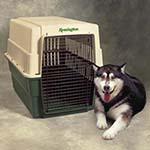 Trasportino per cani in plastica