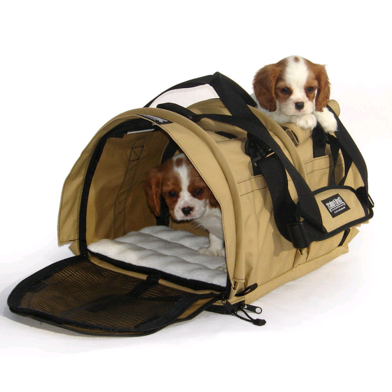 Trasportino per cani trasportino per cani for Amazon trasportini per cani