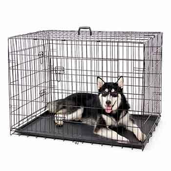 Trasportino Per Cani In Plastica Trasportino Per Cani
